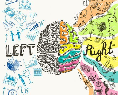 Left Brain/Right Brain Diagram